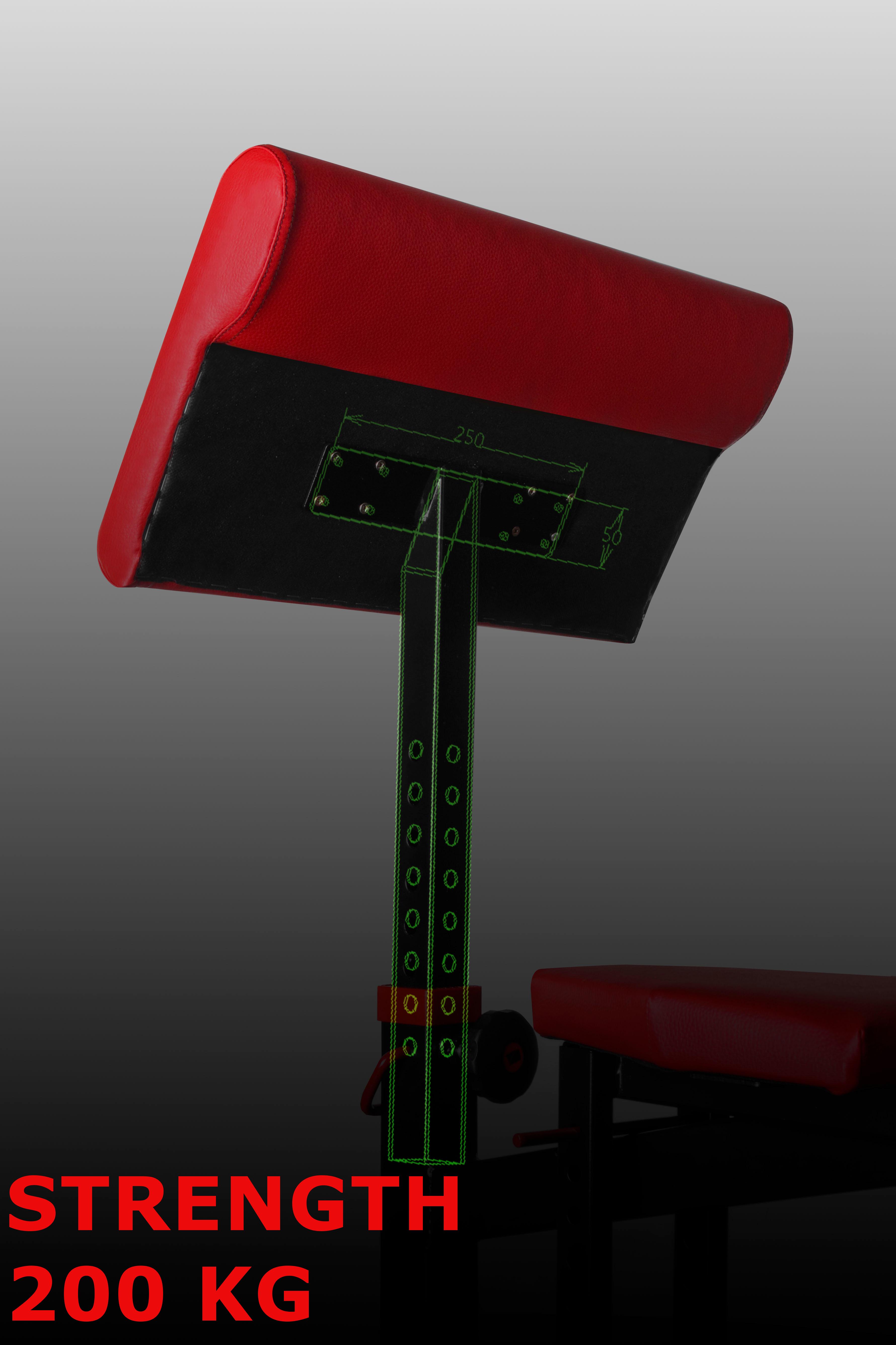 200 kg hz1 preacher arm bench bizeps gewichtheben heim fitness ger te hantel ebay. Black Bedroom Furniture Sets. Home Design Ideas